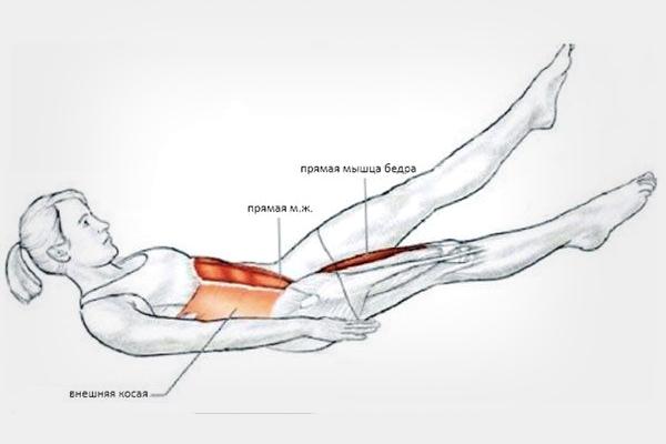 Мышцы при упражнении ножницы